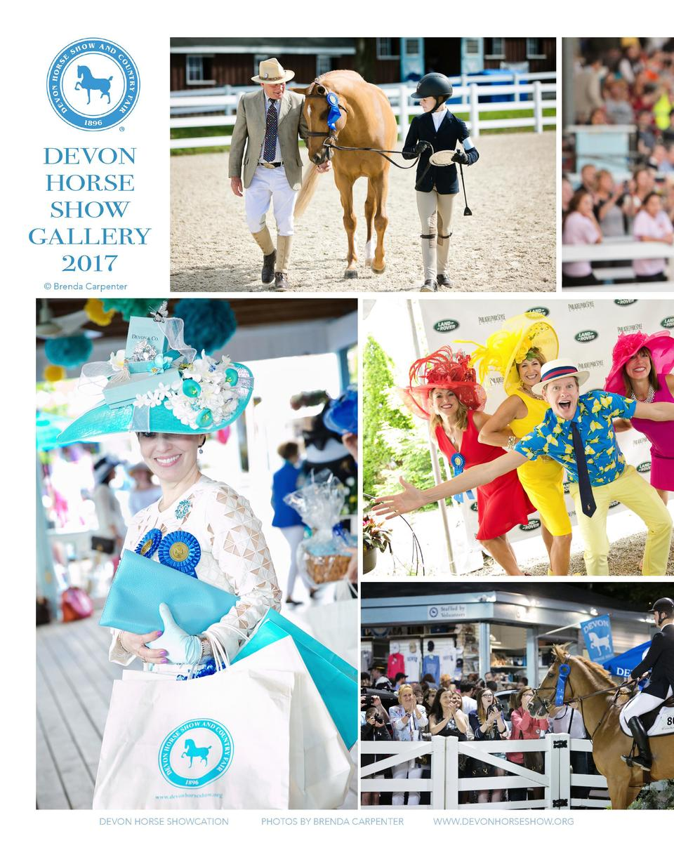 DEVON HORSE SHOW GALLERY 2017    Brenda Carpenter  DEVON HORSE SHOWCATION  PHOTOS BY BRENDA CARPENTER  WWW.DEVONHORSESHOW....