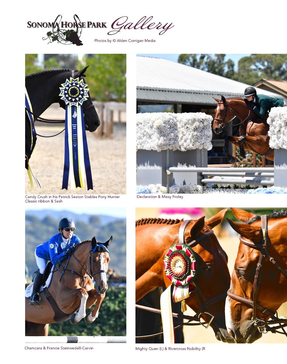 Gallery Photos by    Alden Corrigan Media  Candy Crush in his Patrick Seaton Stables Pony Hunter Classic ribbon   Sash  Ch...
