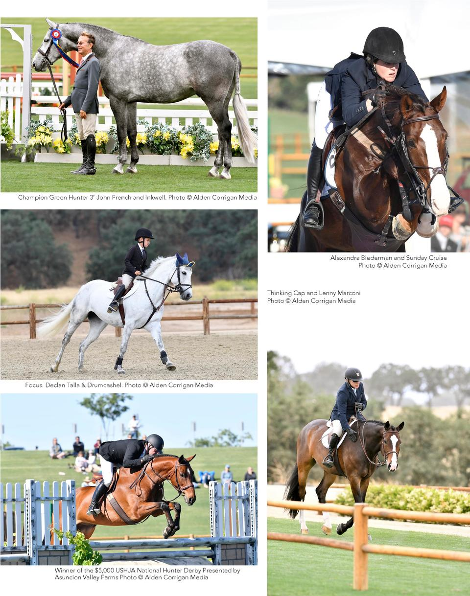 Champion Green Hunter 3    John French and Inkwell. Photo    Alden Corrigan Media  Alexandra Biederman and Sunday Cruise P...
