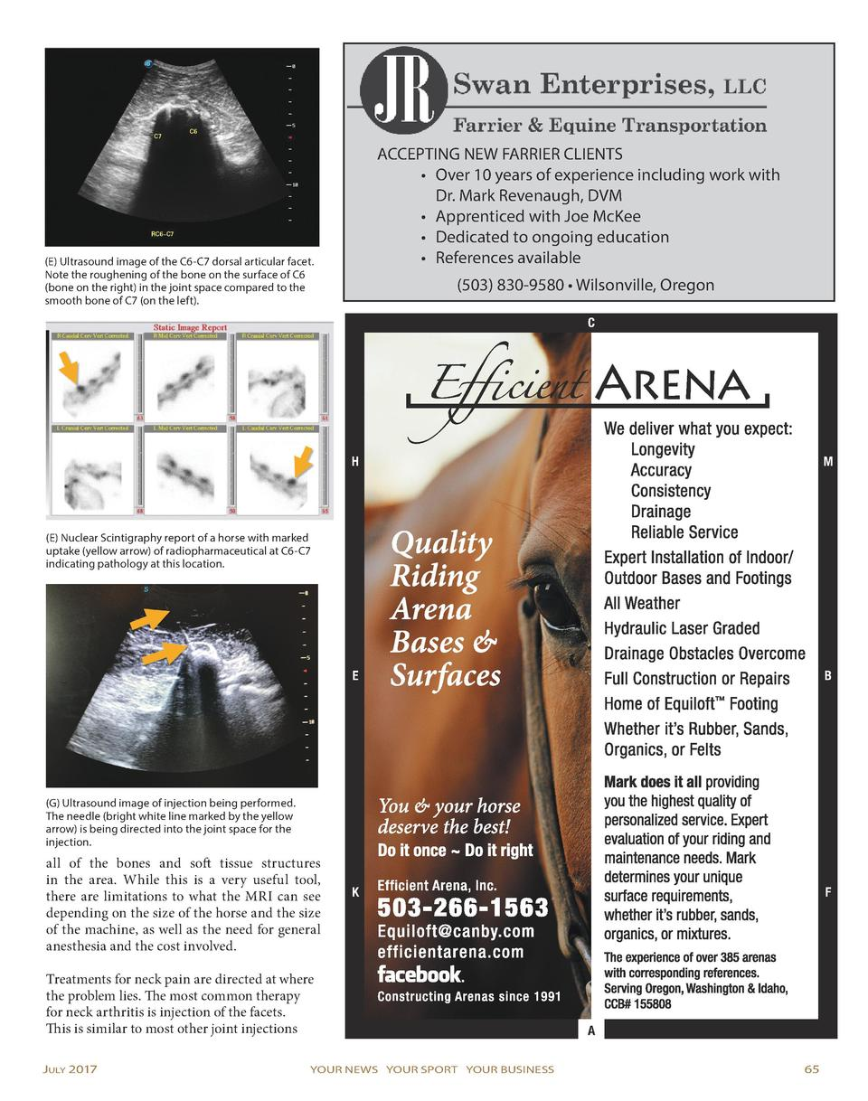 APRIL AD PLACED  ACCEPTING NEW FARRIER CLIENTS     Over 10 years of experience including work with Dr. Mark Revenaugh, DVM...