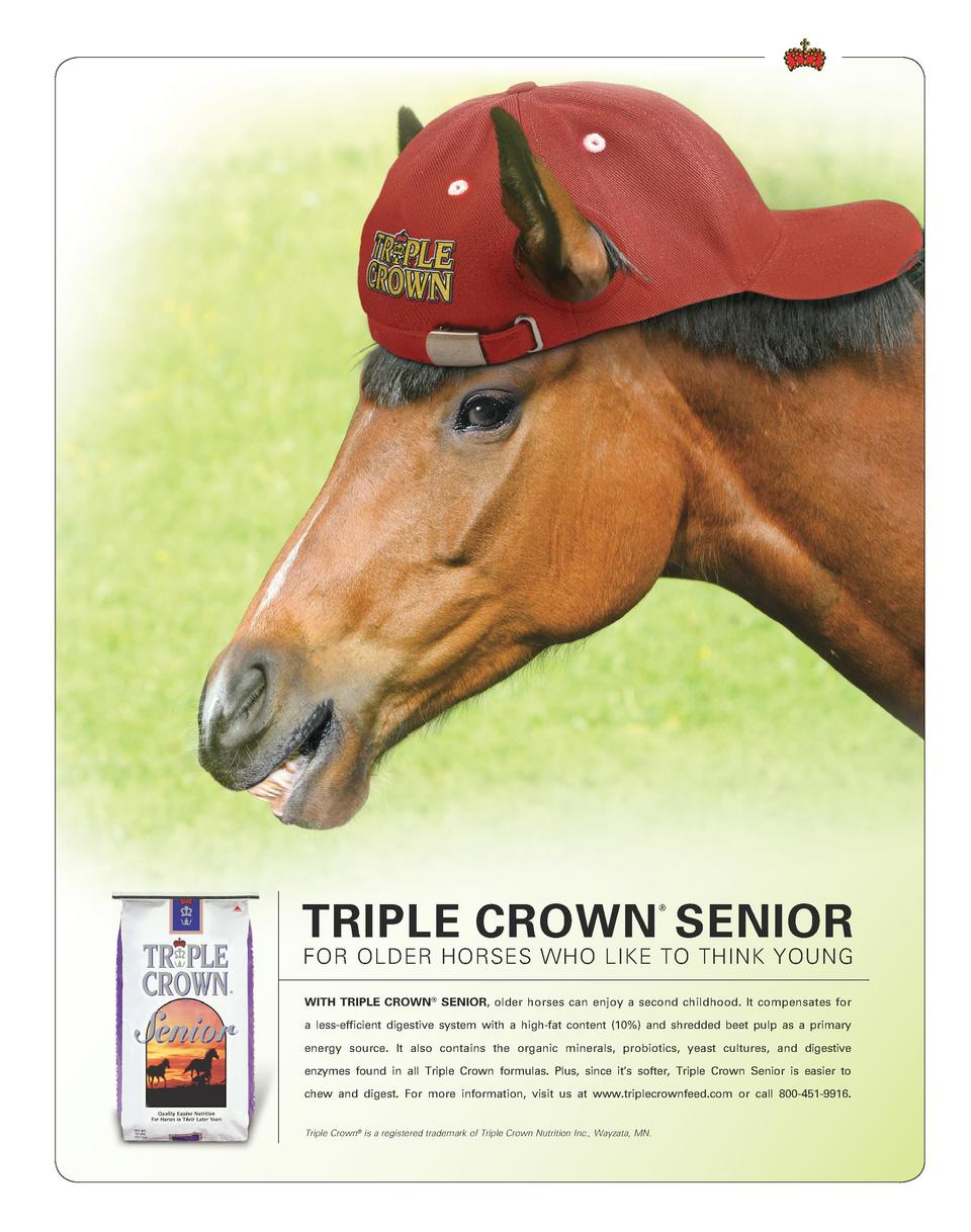 Buy depo provera for horses doc - Triple Crown Senior For Older Horses Who Like To Think Young With Triple Crown Senior