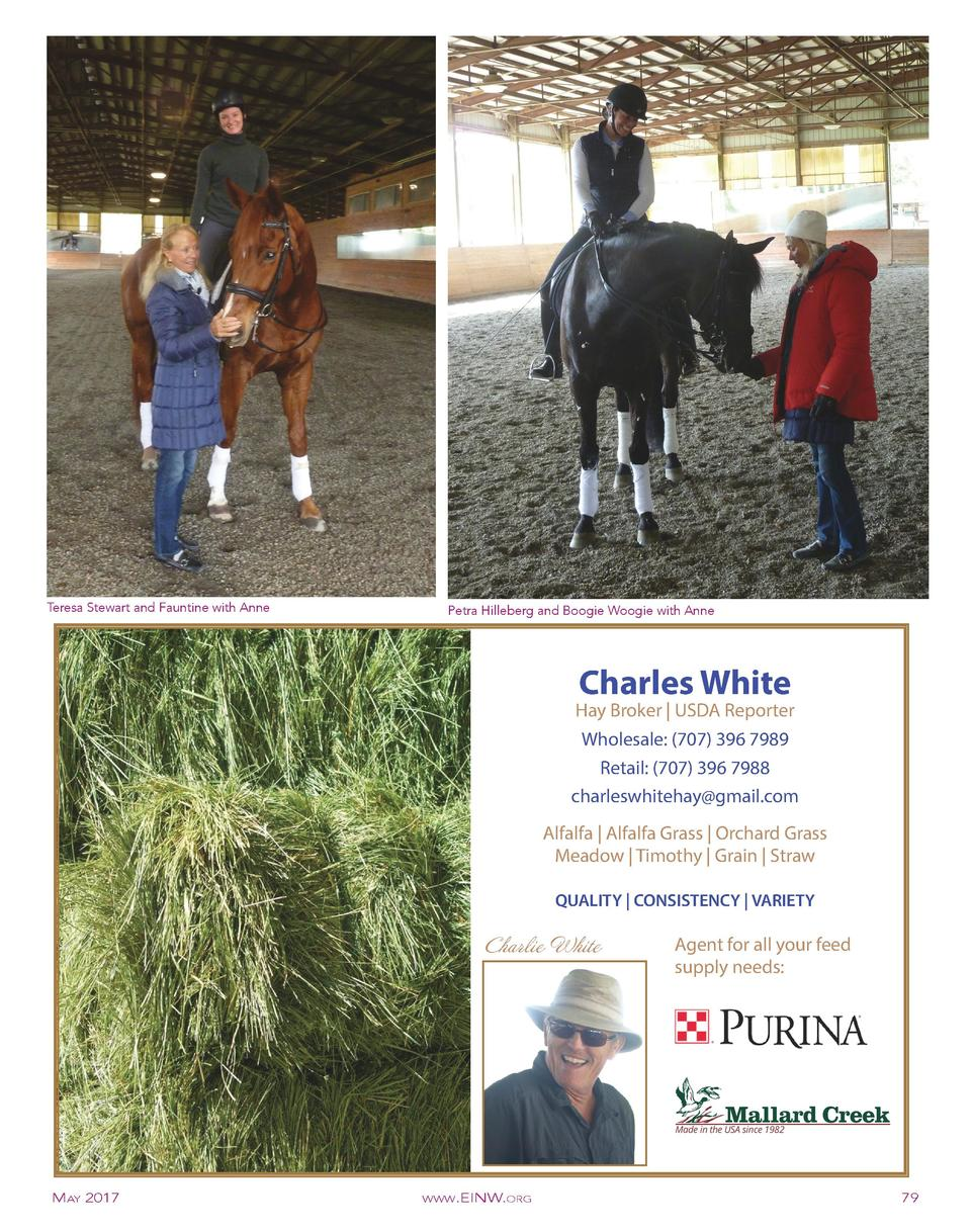 Buy depo provera for horses.doc - Teresa Stewart And Fauntine With Anne Petra Hilleberg And Boogie Woogie With Anne Charles White Hay
